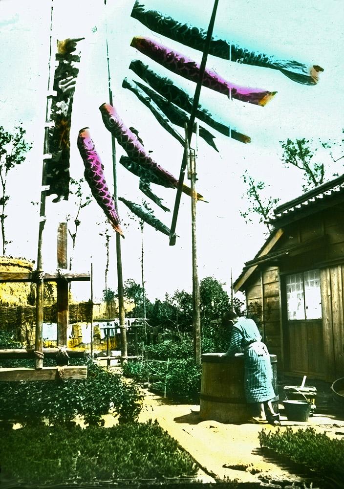 koloriertes Foto: japanische Gärtnerei