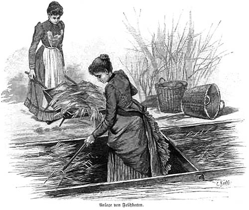 sw-illu: Gärtnerinnen arbeiten im Garten