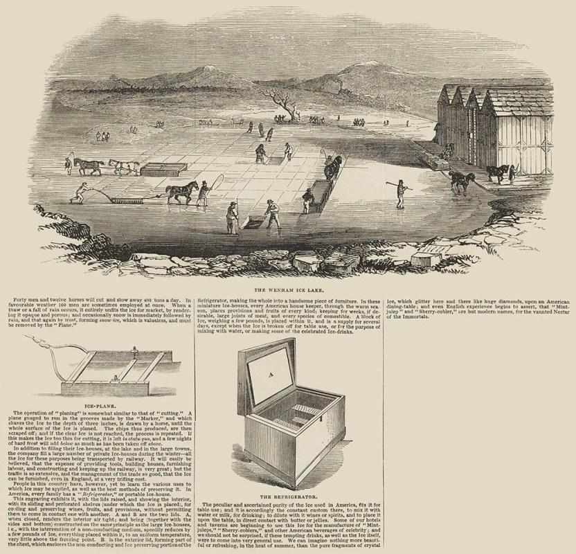 englischer Zeitungsartikel mit Illustrationen