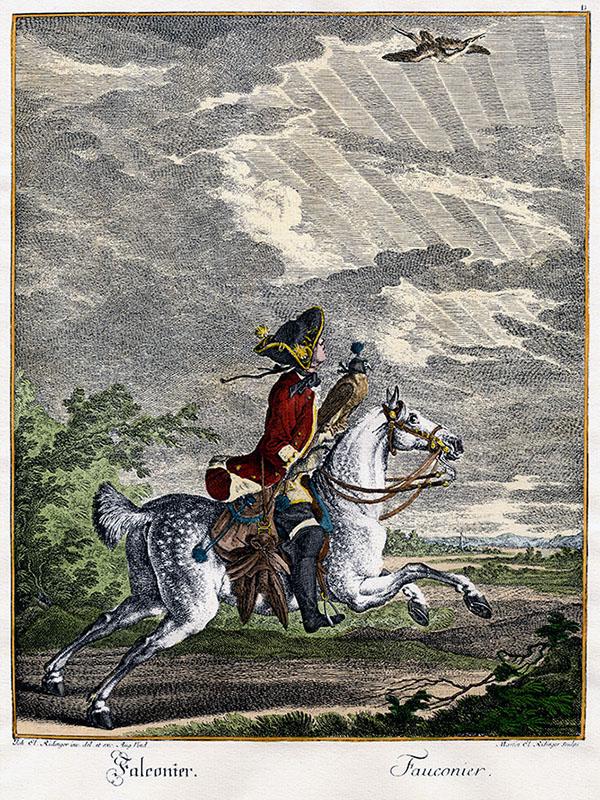 edler Mann auf weißem Pferd reitend mit Falke