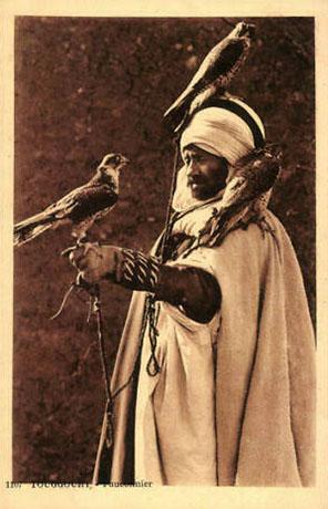 altes Foto: Mann mit drei Falken