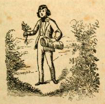 Mann sammelt Pflanzen in Botanisiertrommel