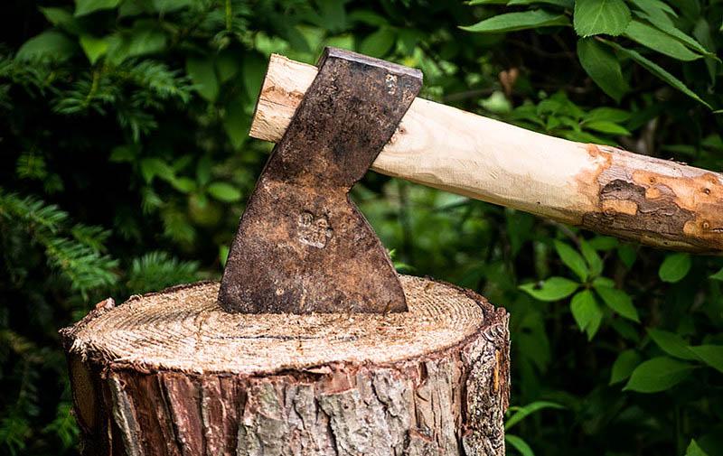Axt steckt im Baumstumpf