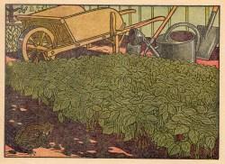 Pflanzen, Schubkarre, Gießkanne