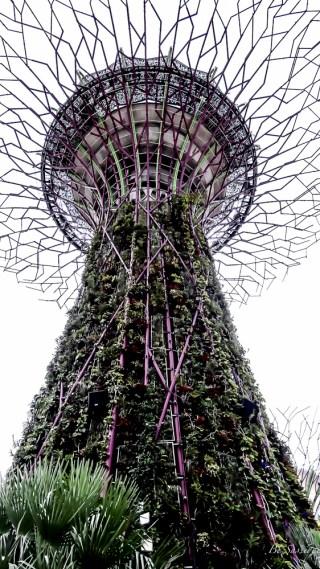 Singapur -eine Stadt, wie keine Andere. Es gibt wohl kaum eine Stadt die das hektische Großstadtleben so entspannt lebt. Von der Mischung aus aus Wolkenkratzern und Grünanlagen über eine ganze Insel nur für Spaß hin zu dem höchsten Infinity Pools er Welt im Marina Bay Sands Hotel. Singapur gehört definitiv ein Traumreiseziel und sollte auf deine Travel Bucket List.