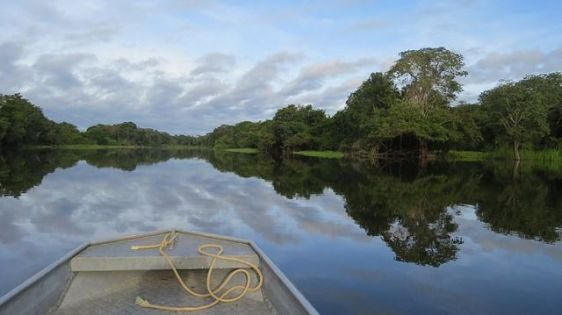 Amazon rainforest where oxygen comes from