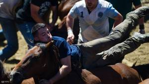 """""""Aloitadores"""" struggle with a wild horse during the """"Rapa Das Bestas"""" (Shearing of the Beasts) traditional event in the Spanish northwestern village of Sabucedo, some 40 kilometers from Santiago de Compostela, northwestern Spain, on July 3, 2016, during the 400-year-old horse festival called """"Rapa das bestas"""" (Shearing of the Beasts).  Hundreds of wild horses are rounded up from the mountains to be trimmed and marked. / AFP / MIGUEL RIOPA        (Photo credit should read MIGUEL RIOPA/AFP/Getty Images)"""