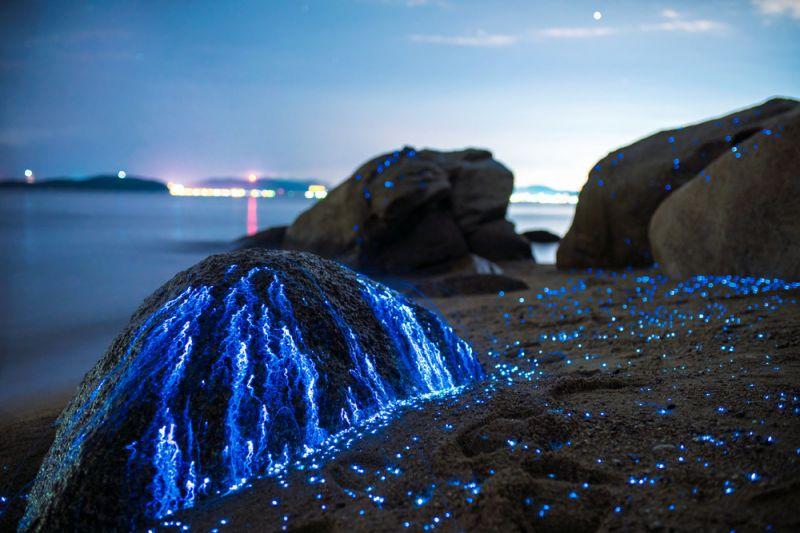 تعرف على الصخور الباكية قبالة شواطئ اليابان!
