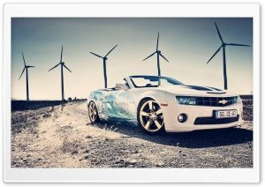 sea_car-t1