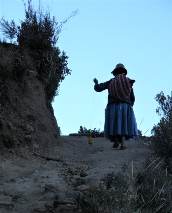 Isla del Sol, Bolivia – August 22, 2013: A woman walks up dressed in a traditional outfit.