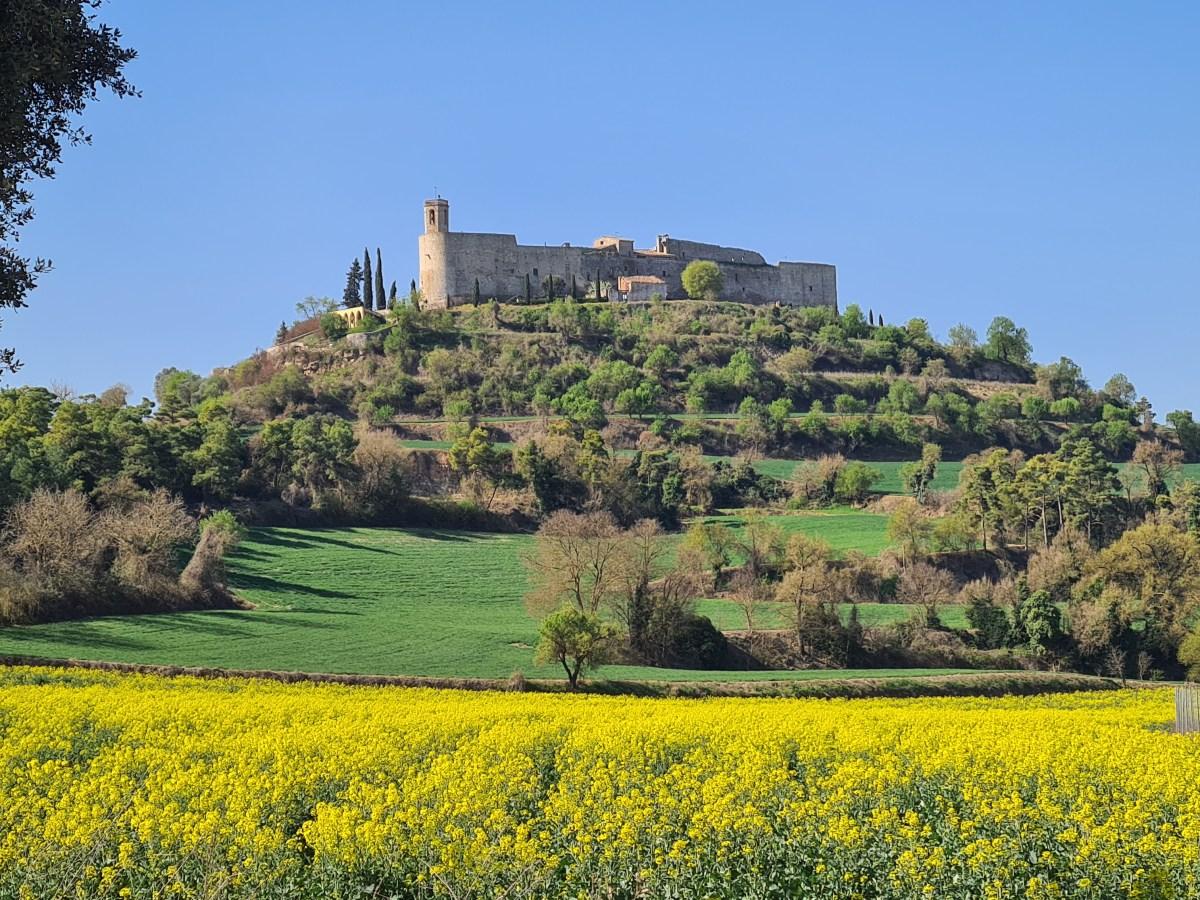 perfect medieval village