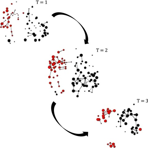 Analysing animal social network dynamics: the potential of