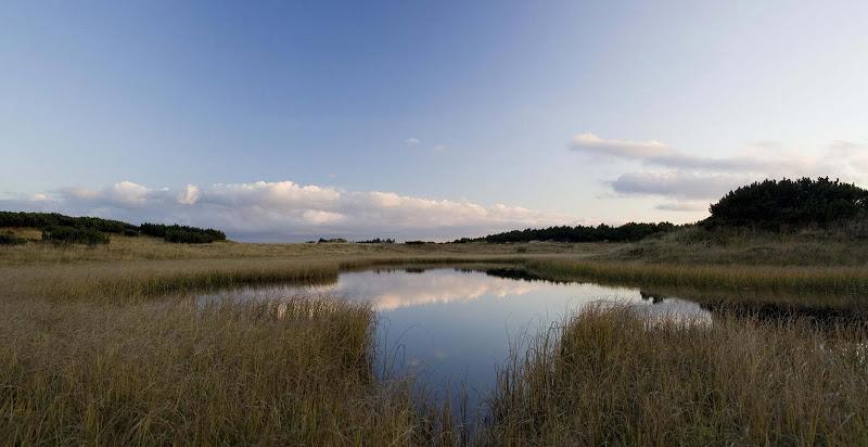 _MG_0621-Panorama