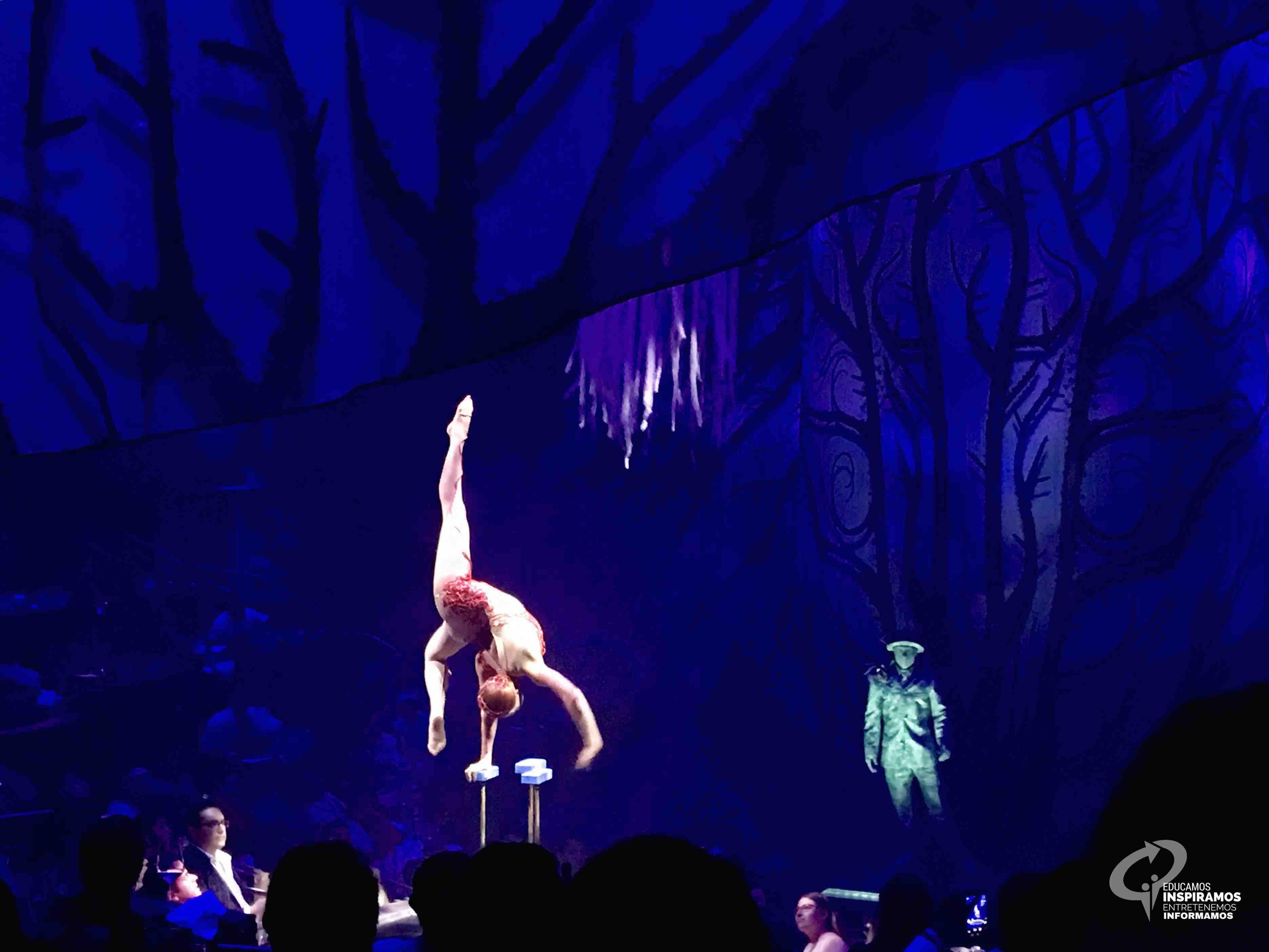 Cirque Du Soleil en la Riviera Maya JOY  Riviera Maya