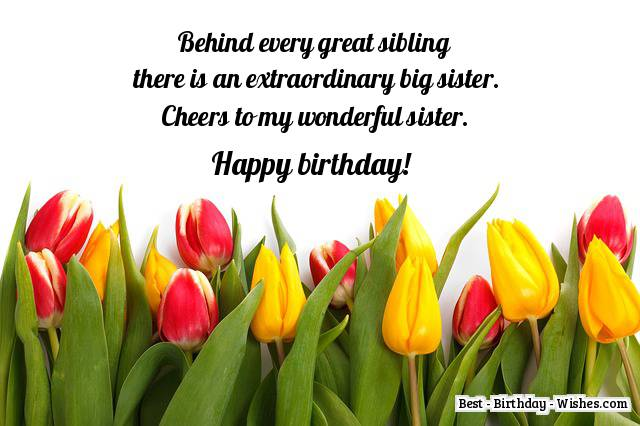 65 birthday wishes for sister messages quotes for a sisters happy birthday big sister m4hsunfo