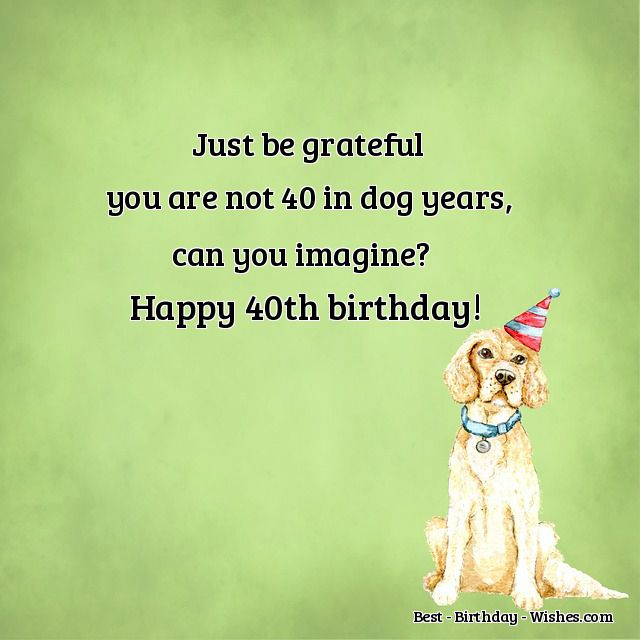 40th Birthday Wishes - Funny & Happy Messages & Quotes for ...