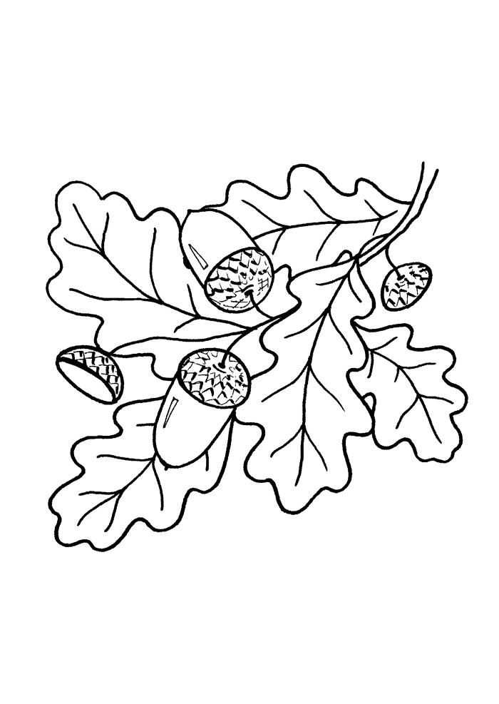 Tree leaves coloring pages for kids to print for free