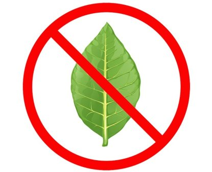 No tobacco symbol