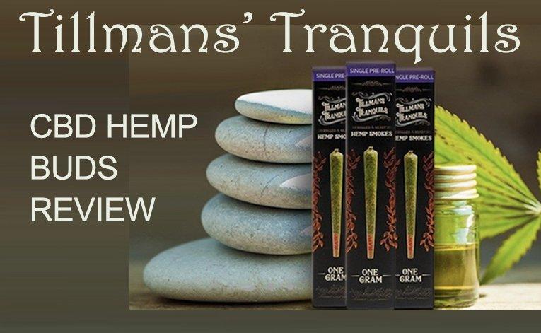 Tillmans Tranquils Featured Image