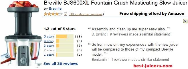 Breville brebjs600xl review image