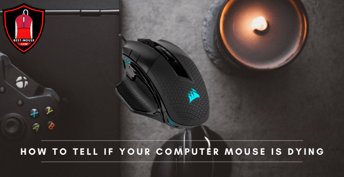 How to Tell if Your Computer Mouse Is Dying?