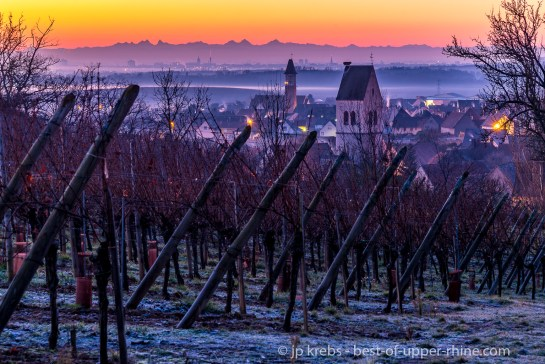 Swiss Alps in the far seen from the Alsace vineyards of Mittelwihr