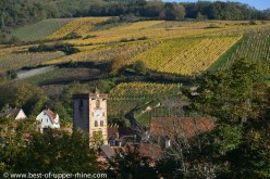 Ribeauvillé, a charming little city