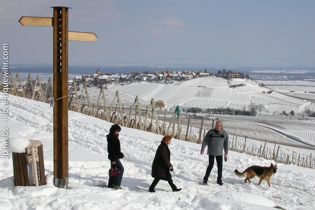 A nice walk through the snow around Riquewihr.