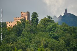 Chateau de Kintzheim and chateau Haut-Koenigsbourg
