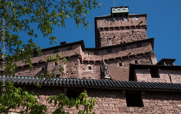 In Spring, the new green and tender leaves are softening the massive and impressive walls and dungeon of castle Haut-Koenigsbourg.