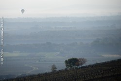 Hot air balloon in the still early morning