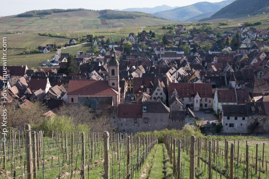 Riquewihr in spring seen from the vineyards of Schoenenbourg.