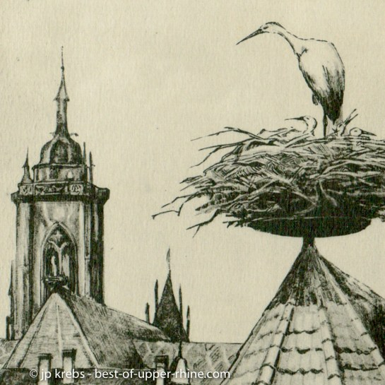 Stork on the roofs of Colmar. Old drawing