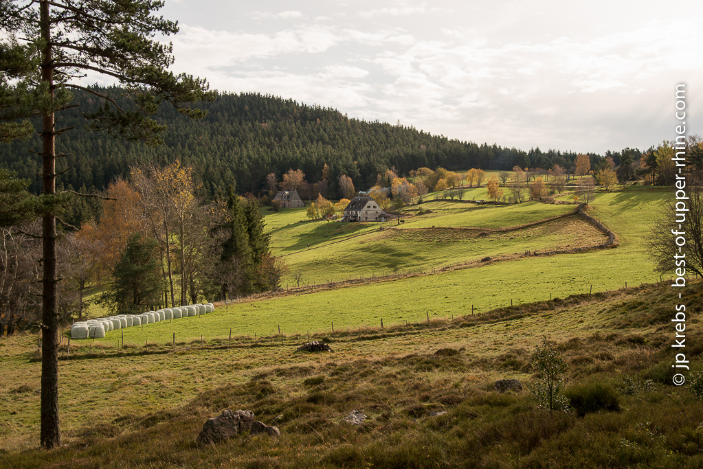 A farm between the Wettstein pass and the Linge