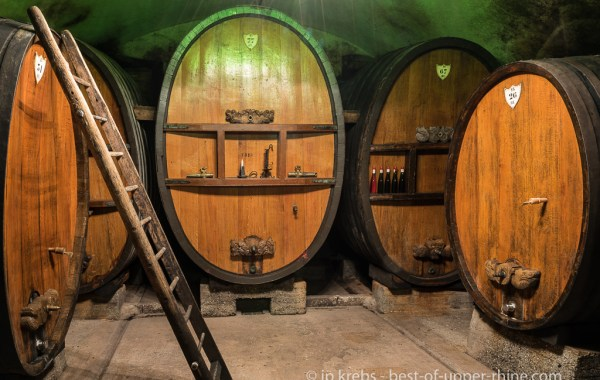 Open Cellars in Mittelbergheim: the wine cellar of the domain Wittmann.
