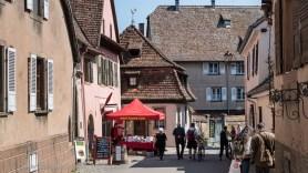 Wine festival in Mittelbergheim.