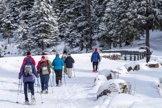 A group of senior citizen in snowshoeing around Lac Vert (green lake), Hautes Vosges.