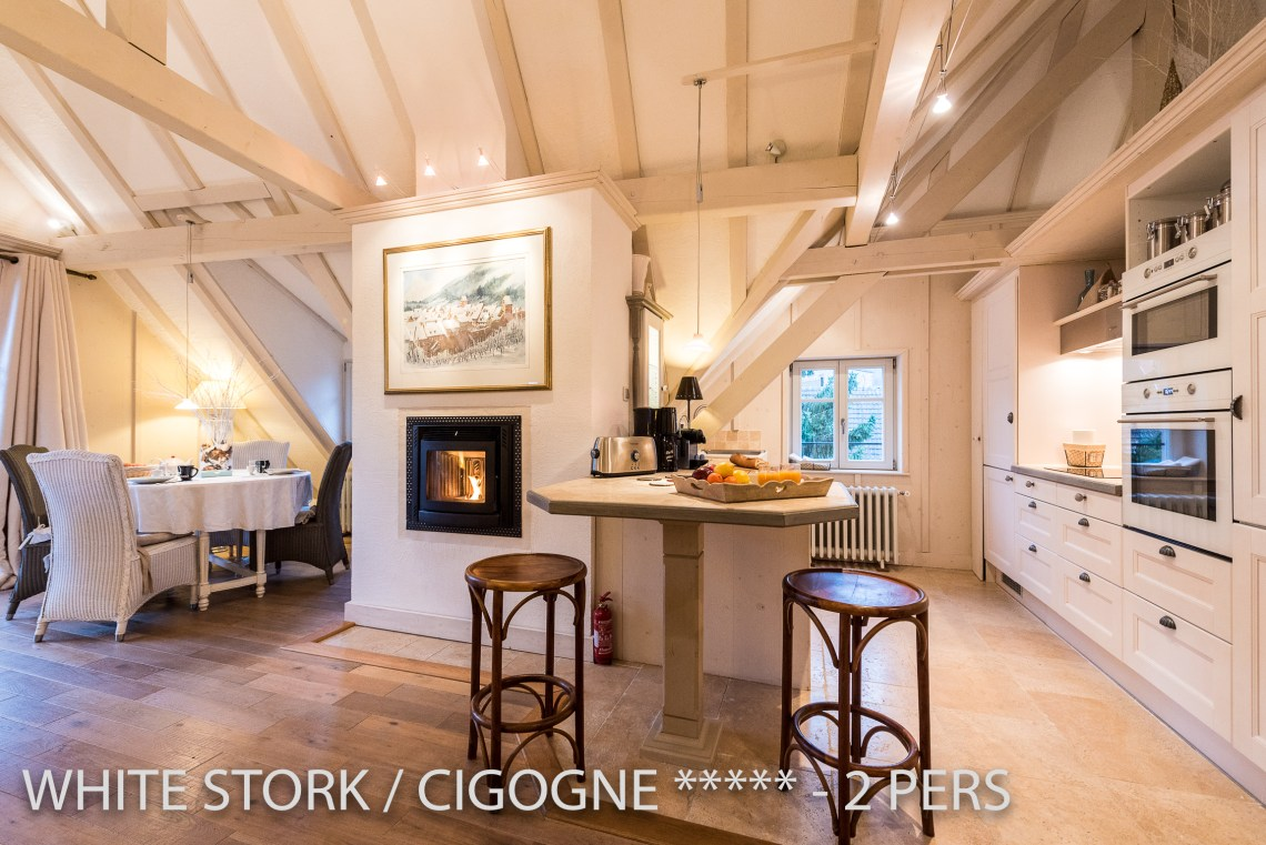 The main room of the White Stork, spectacular and romantic loft apartment with terrace in Riquewihr