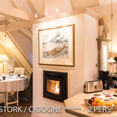 The living room have a fire place in the White Stork, Spectacular and romantic loft apartment with terrace in Riquewihr in Alsace on the Alsace Wine Route!