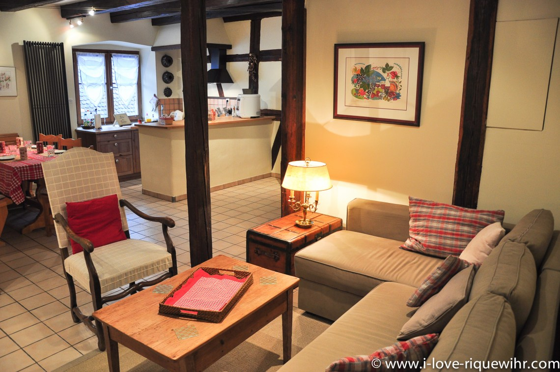 The main room and the sofa of Riesling in Riquewihr, beautiful and charming apartment for 2-4 adults is located in the medieval heart of Riquewihr in Riquewihr Alsace