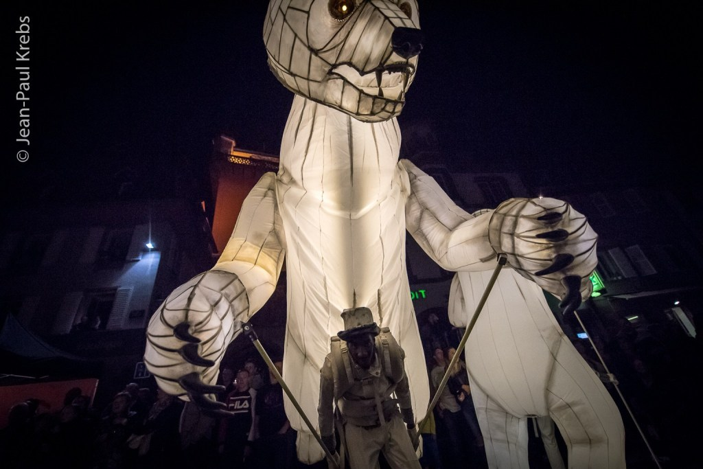 Sélestat, Corso Fleuri 2017. Night parade.