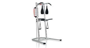 Bowflex BodyTower (Power Tower) Review, Manual, Exercises