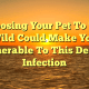 Exposing Your Pet To The Wild Could Make You Vulnerable To This Deadly Infection