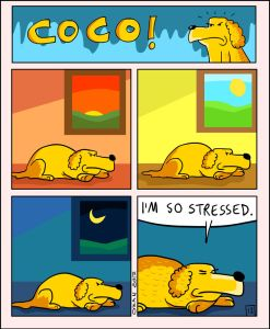 coco the dog ozan draws comics 4 5a38c8aa8b8a5 png  700 247x300 - 17 Hilariously Pessimistic Comics About Coco The Jolly Dog That Every Pessimist Will Relate To