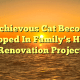 Mischievous Cat Becomes Trapped In Family's Home Renovation Project