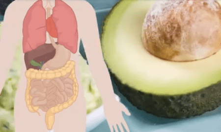 what eating a banana and an avocado every day can do to your body hangover cure - What Eating a Banana and an Avocado Every Day Can Do to Your Body – Hangover Cure