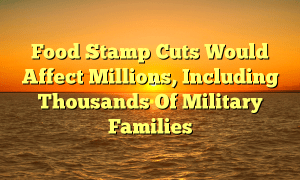 Food Stamp Cuts Would Affect Millions, Including Thousands Of Military Families