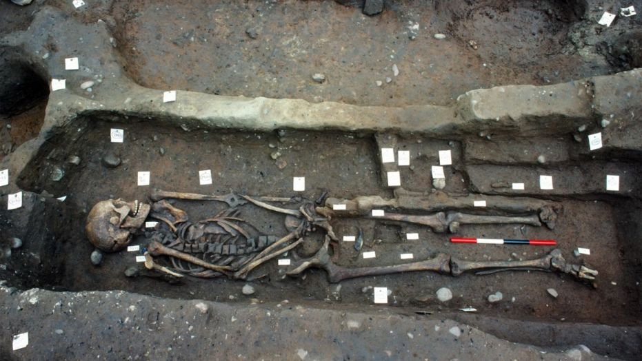 A Viking skeleton from a grave at Repton, Derbyshire, in England. (Credit: Copyright Martin Biddle)
