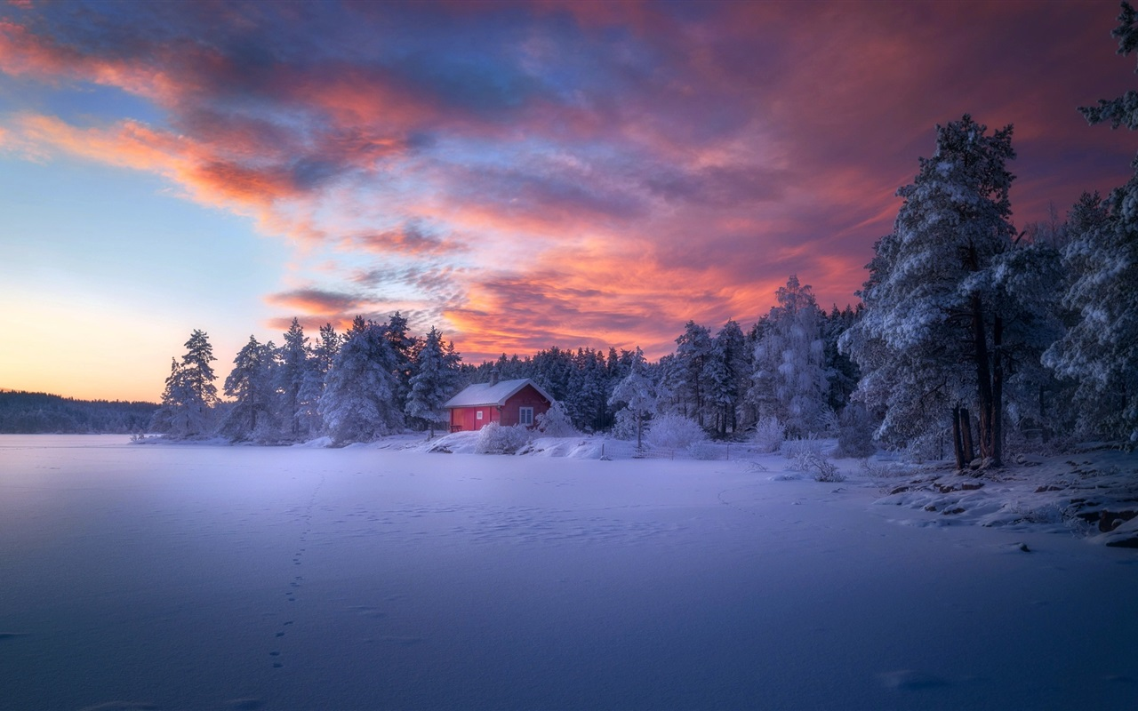 Download Wallpaper 1280x800 Winter, Forest, House, Snow