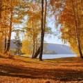 Nature autumn scenery yellow leaves trees lake mountains wallpaper